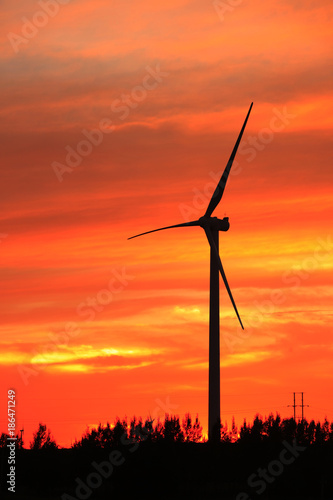 Fotobehang Koraal Wind turbines in the evening