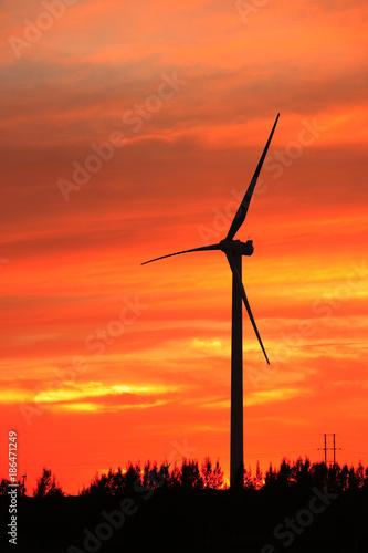 Foto op Plexiglas Koraal Wind turbines in the evening