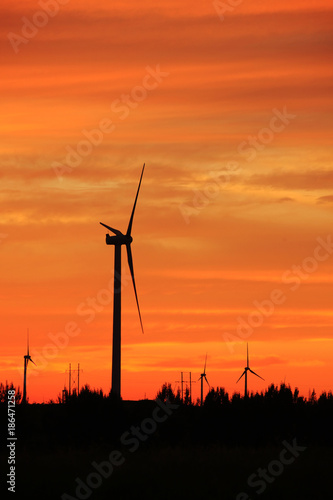 Fotobehang Oranje eclat Wind turbines in the evening