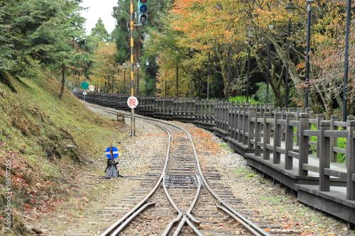 In de dag Spoorlijn wooden in Alishan national park,Taiwan