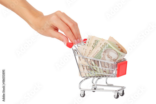 Banknotes of five hundred hryvnias in the shopping cart, isolated