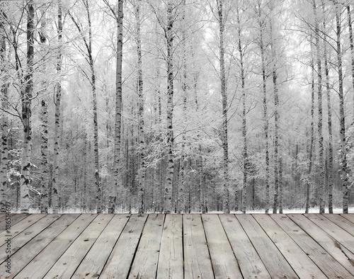 Plexiglas Berkenbos Empty wooden board table and birch trees