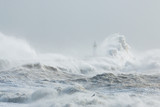 Newhaven, Sussex, Stormy Seas With Wave Crashing against Sea Wall.  Lighthouse Partially Visible Behind.  Seagull Flying Through Spray. - 186515005