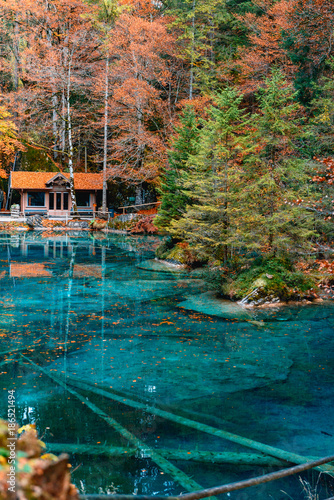 Fotobehang Groen blauw Beautiful crystal clear water at best-know Blausee lake in Kandersteg, Switzerland during autumn season