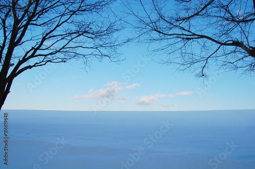Foto op Aluminium Blauw 雪原 北海道