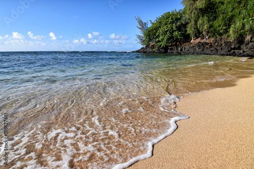 Tropical Beach - 186627661
