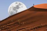 Dune walking in the Namib Desert at Sossusvlei in Namibia poster