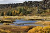 Pingvellir Rift Valley - Iceland poster