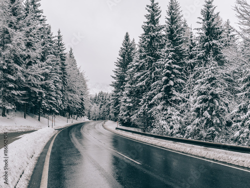 Fotobehang Natuur Winter road. Country road through forest. Travel concept.