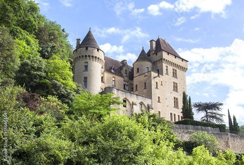 Fotobehang Pistache Le château de La Roque Gageac vu depuis la Dordogne. Dordogne. Nouvelle Aquitaine