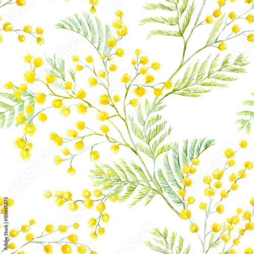 Watercolor mimosa vector pattern - 186665875