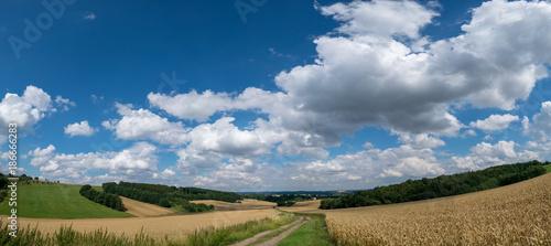 Fotobehang Panoramafoto s Panorama summer fields