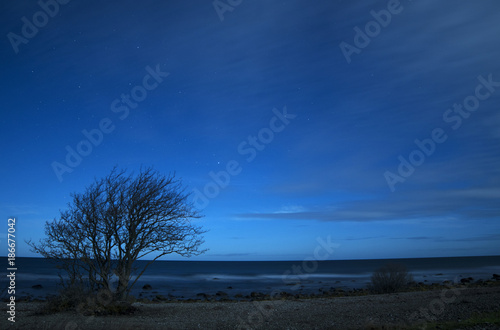 Foto op Canvas Natuur Stars over the Baltic Sea