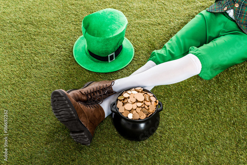 cropped view of leprechaun with hat and pot of gold sitting on green grass