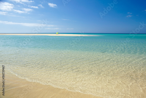 Foto Murales Sotavento Beach in Fuerteventura, Canary Islands, Spain
