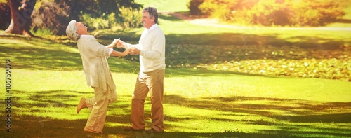 Mature couple dancing in the park - 186759079
