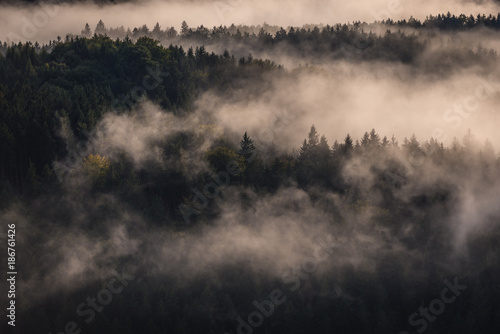 Evening view of Czech Switzerland region in Elbe Sandstone Mountains, Czech Republic Poster