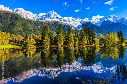 Foto op Canvas Bergen The foot of Mont Blanc