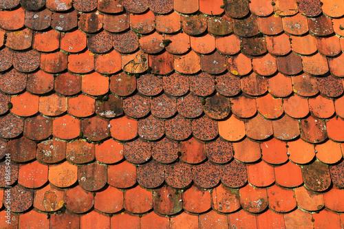 Foto op Aluminium Brandhout textuur Dachziegel