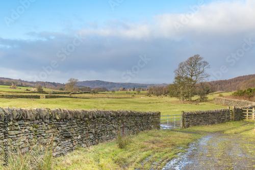 Foto op Aluminium Pool A Lake District Landscape