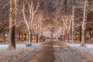 Boston in Massachusetts, USA at Commonwealth Avenue with snow and Christmas Lights.