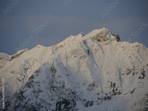 Staande foto Grijs Tiroler Alpen