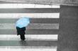 Person holding umbrella on street.