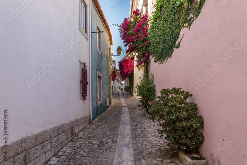 Aluminium Smalle straatjes Narrow streets in Portugal