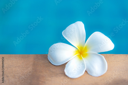 Plumeria flowers spa near swimming pool, relax and healthy care.  Healthy Concept - 186941252