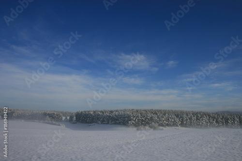 Fotobehang Nachtblauw Winterlandschaften