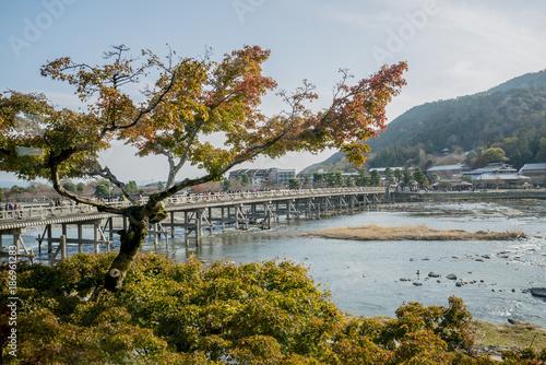 Fotobehang Kyoto Arashiyama Bridge Autumn Red Tree