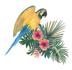 Watercolor painting parrot with tropical floral composition