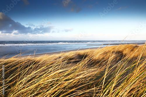 Foto op Plexiglas Noordzee Küstenlandschaft Nordfriesische Inseln