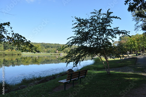 Aluminium Lente Wood Bench Overlooking a Lake