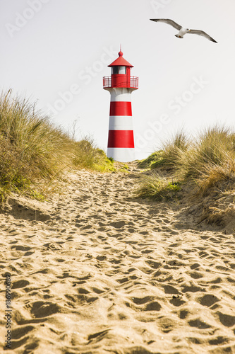 Foto op Canvas Noordzee Rot/Weißer Leuchtturm