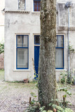 Tree trunk in front of old white colored house in dutch city Deventer. Overijssel, Netherlands.