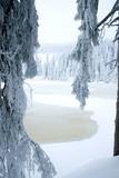 Mummelsee im Winter - Schwarzwald  - 187001003