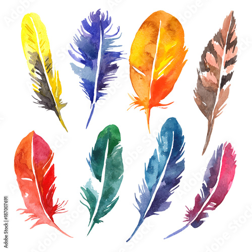 Watercolor feather set. Hand drawn vector illustration  - 187007691