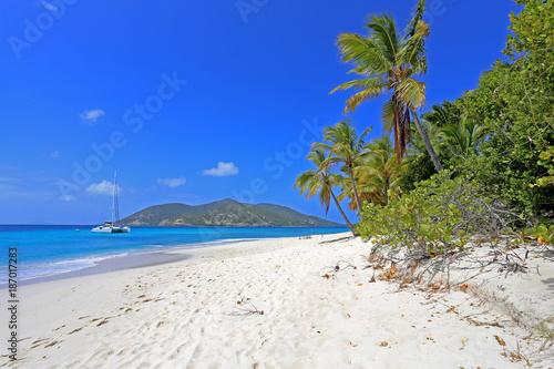 Foto op Aluminium Tropical strand Trauminsel in der Karibik (Sandy Island, British Virgin Islands)