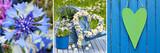 Garten Collage