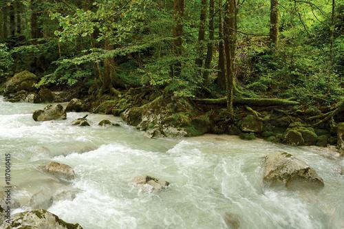 Papiers peints Rivière de la forêt Alpine river in the forest