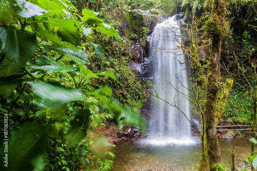 Foto op Canvas Natuur Waterfall in a cloud forest near Boquete, Panama. Accessible by Lost Waterfalls hiking trail.