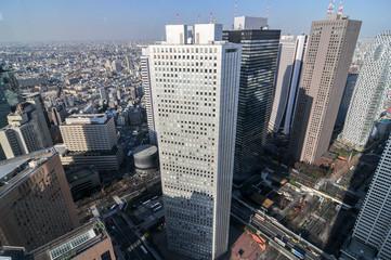 Tokyo Skyline - Japan