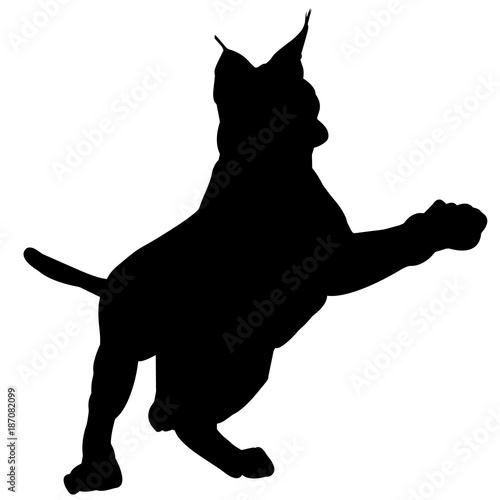 lynx silhouette vector graphics buy photos ap images detailview