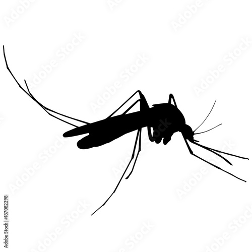 Mosquito Silhouette Vector Graphics - 187082298