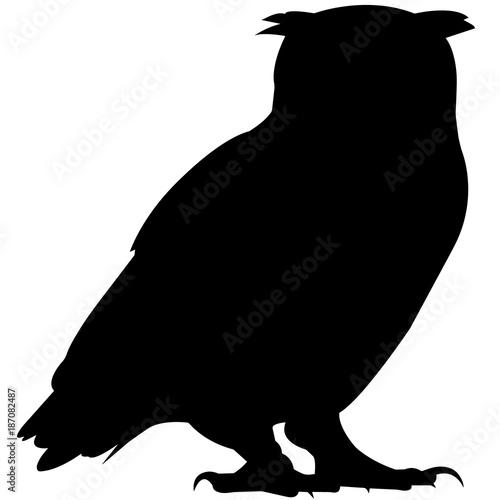 Keuken foto achterwand Uilen cartoon Owl Silhouette Vector Graphics
