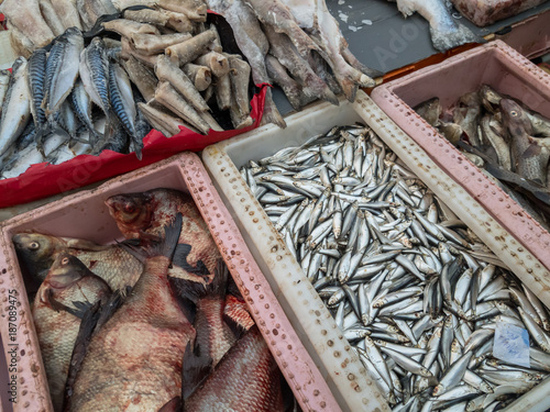 Fish for sale at the market