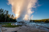 Grotto Geyser in Yellowstone National Park - 187090293