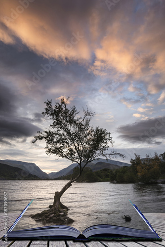 Salmon Beautiful landscape image of Llyn Padarn at sunrise in Autumn in Snowfonia National Park