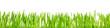 Panorama, grünes gras oder Ostergras vor weißem Hintergrund
